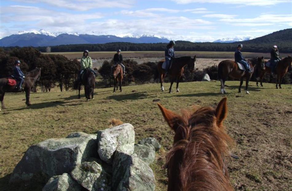 Highride Adventures horses take a breather before the gentle descent to the  Upukerora River.
