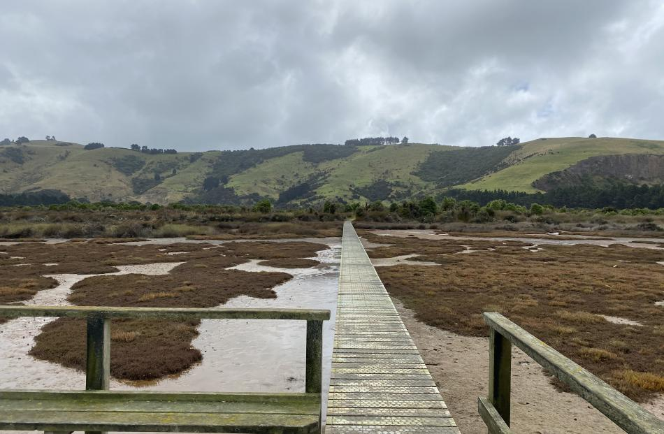 The Aramoana saltmarsh boardwalk allows visitors to reach the centre of the 240ha marsh without...