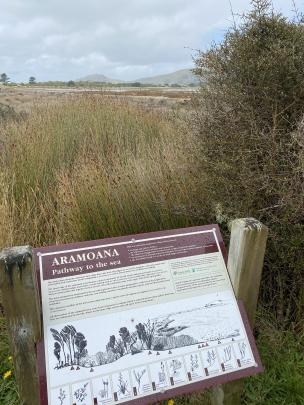 A panel describing the many plant and bird species of the Aramoana saltmarsh visible behind.