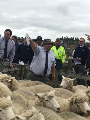 Rural Livestock auctioneer Robbie Reid takes a bid on a pen of Romney-cross two-tooth ewes which...