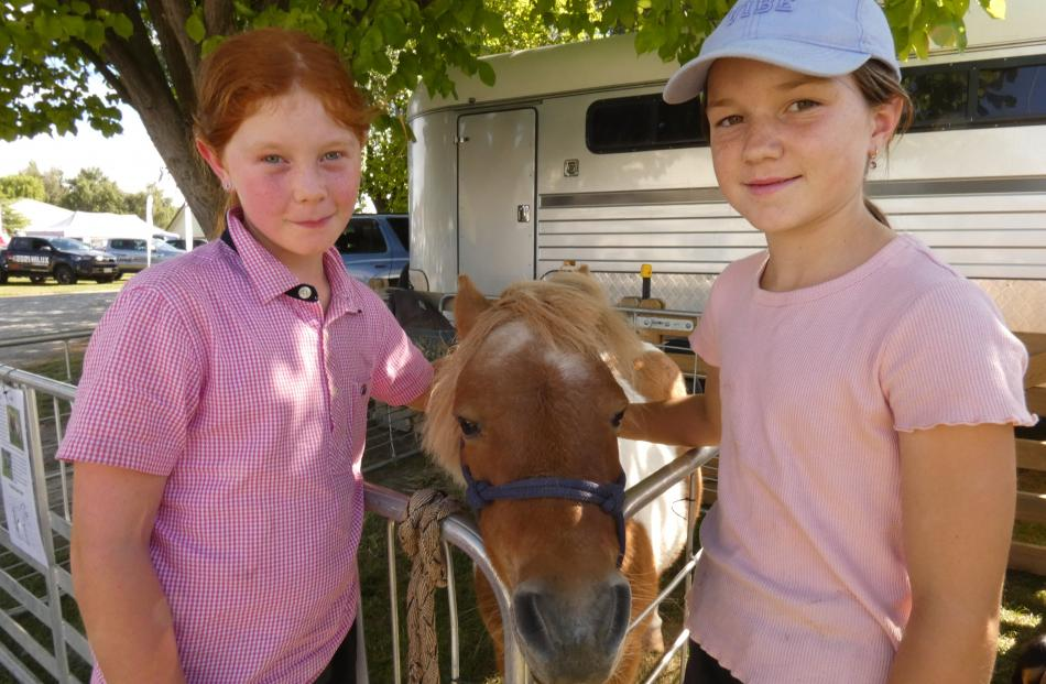 Cinnamon the pony welcomes the attention of Ruby Boyd (9, left) and Brydhi Dundass (9), both of...