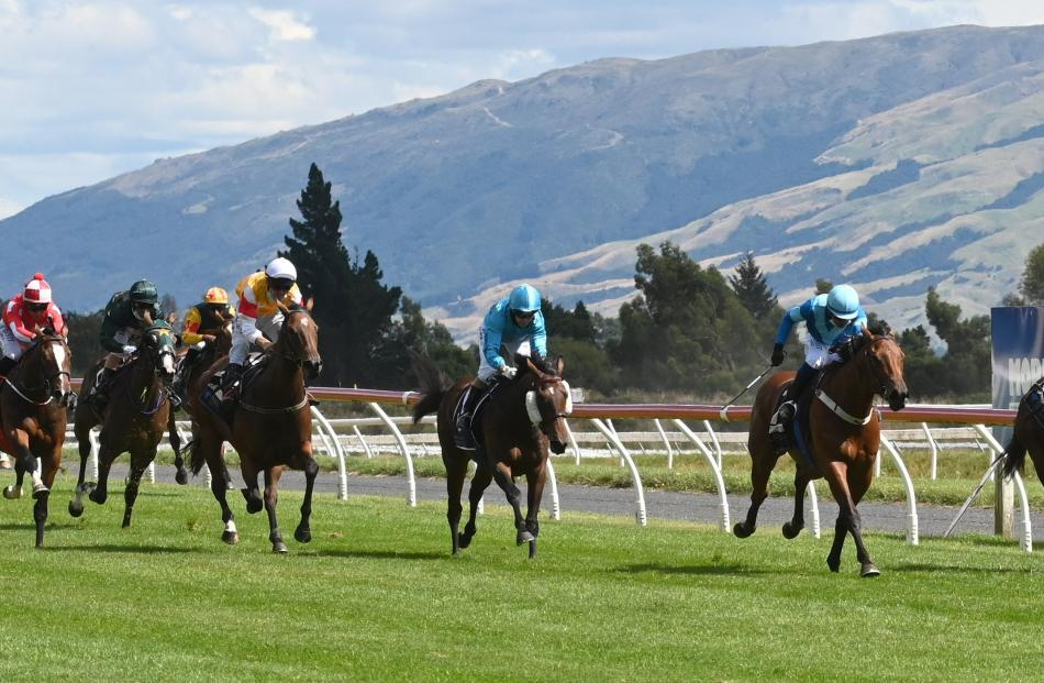 The small crowd at the New Zealand Bloodstock Breeders Day at Wingatui had something to cheer...