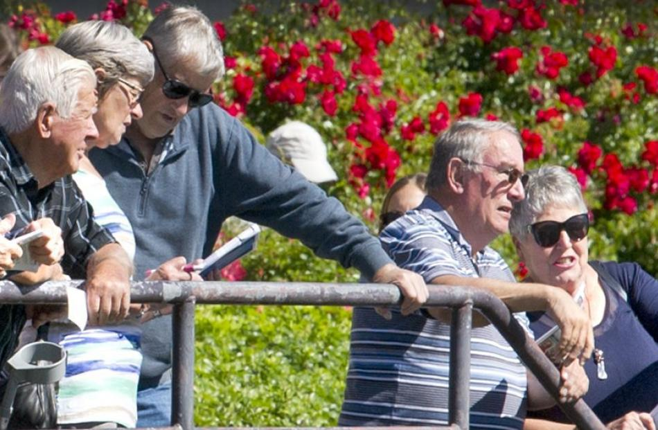 Spectators pay careful attention to the races.