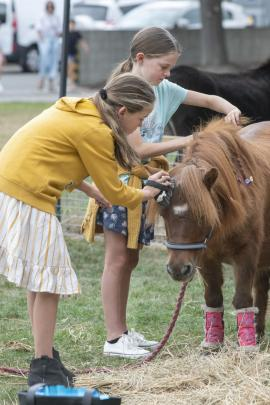 Sisters Lily, left, 10, and Summer van Ameyde, 9, groom a miniature horse in the petting zoo area.