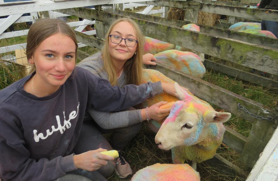 There was plenty on offer at the Methven A&P Show on March 20, including a sheep-colouring...