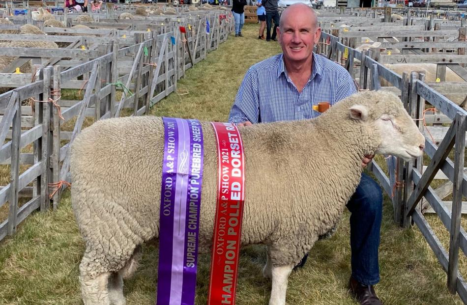 Dick Frahm was thrilled to win supreme purebred sheep of the show with his two-tooth Poll Dorset...