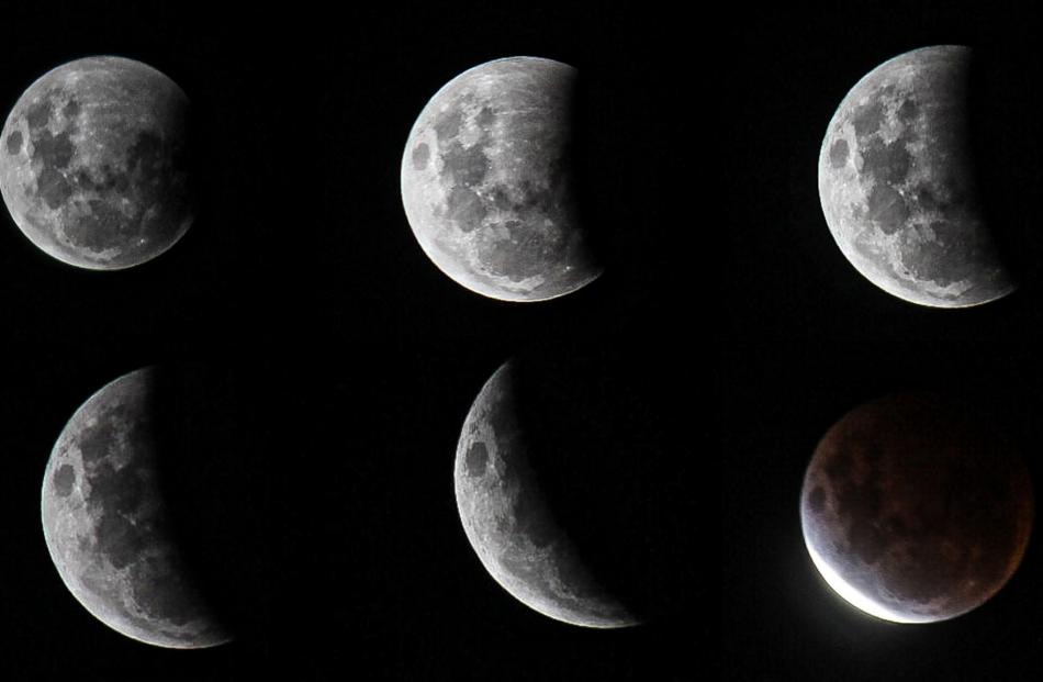 Images of the eclipse from Sara Ward.
