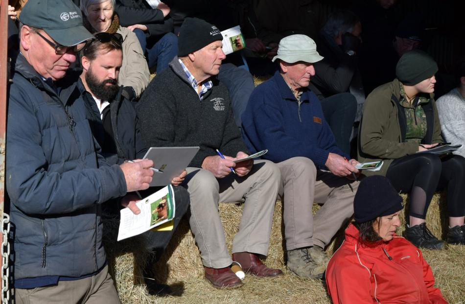Watching the sale are (from left) Anthony Cox, of Canterbury, Sam Murphy, of Dunedin, Alex Bell,...