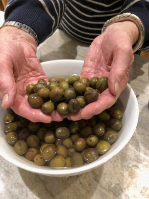 Olives are soaked for pickling in water until they have changed colour and lost their bitterness.