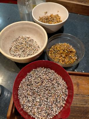 The corn is then shucked and left to dry before scraping the grains off and removing the chaff.