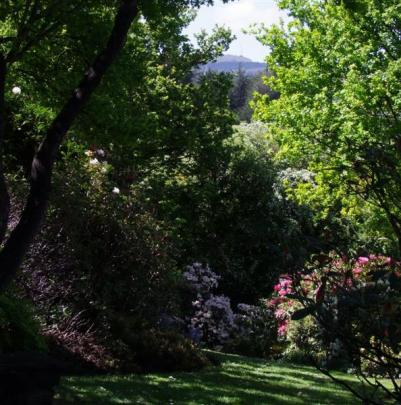 Woodland views are part of the garden's charm.