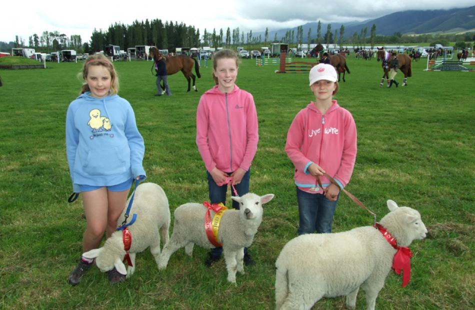 Willowbank School pupils Sophie Stark (11) with lamb Bluebell, Ella McCall (11) with Buttons, and...