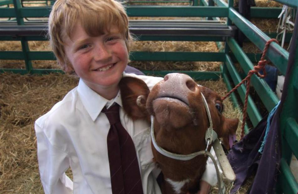 Jared Rutten (9), of Invercargill, shares a moment with his pet calf Sapphire.
