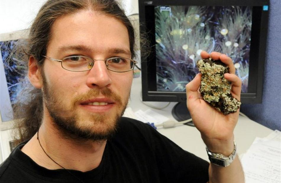 University of Otago botany doctoral student Lars Ludwig holds a rare bog lichen found at Swampy...