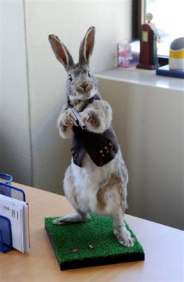 Every magician needs a rabbit but  this  furry friend just happens to sport a gun and ammunition.