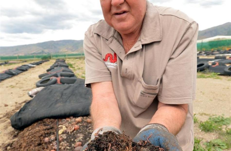Central Wormworx owner Robbie Dick sold tiger worms to Dunedin International Airport and shares...