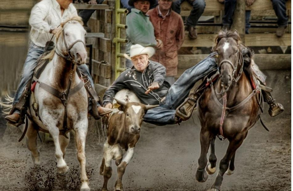 Open Projected Images  Honours:  Jennifer Taputu, Tokoroa  'Cowboys'