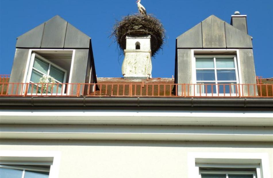 The stork nesting on the Pfanzelthouse in Langengeisling, near Erding.