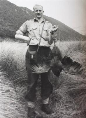 Rex Watson holds a trussed-up takahe on the day the birds were rediscovered.