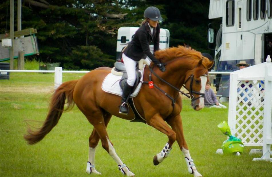 Claudia Hay, of Dunedin, and Euro Sport Heartbreaker  in winning form in the grand prix class at...