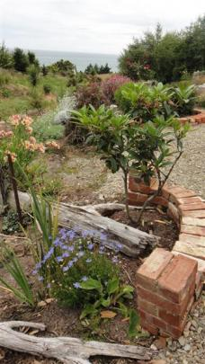 An old brick pile from Richmond St now props up the 'rosealea' garden.