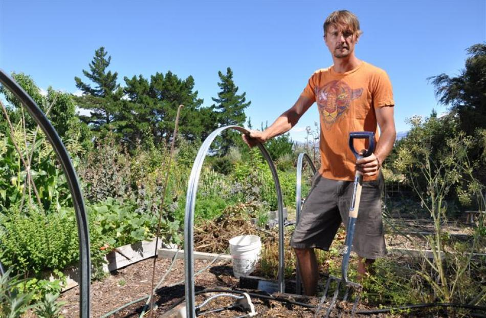 Ben Elms checks his cloche hoops are secure before covering them with frost cloth. Photos by...