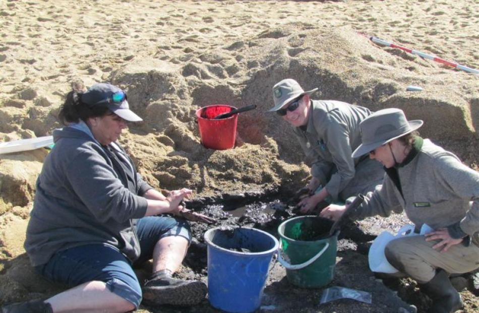 Huia Pacey (left), Shar Briden and Marion Sutton help excavate moa bones from a historic site at...