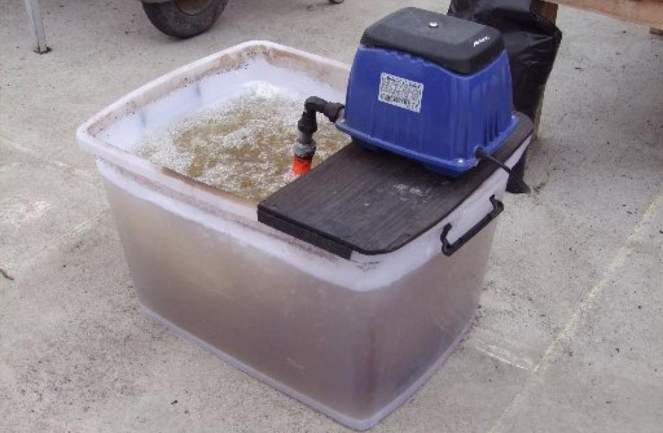 The first step in making compost tea is agitating water to remove chemicals.