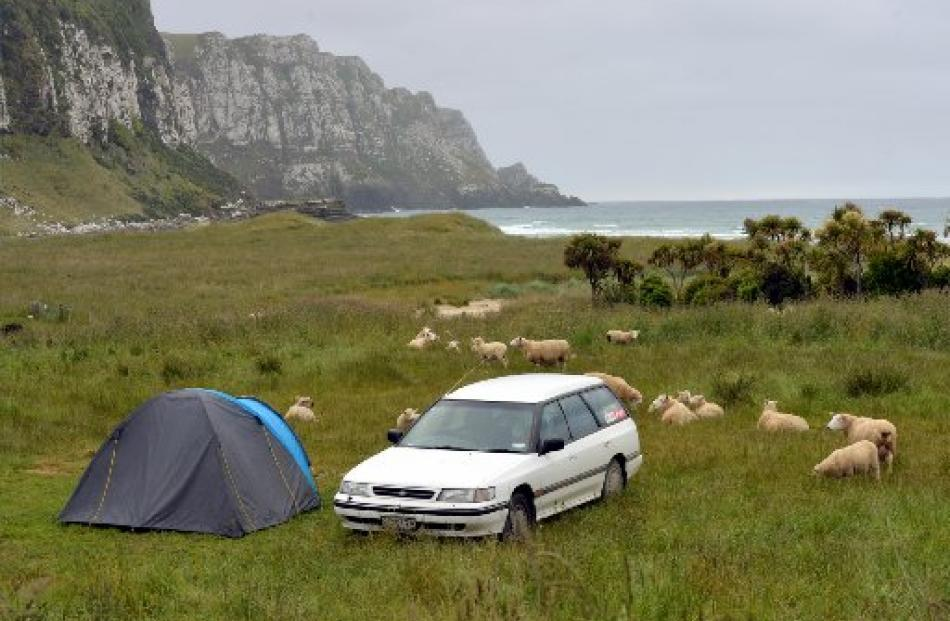 Freedom camping in Purakaunui Bay.