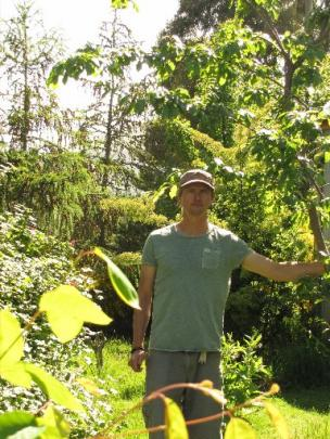Mr Elms in the random collection of trees, shrubs and plants that make up his food forest.