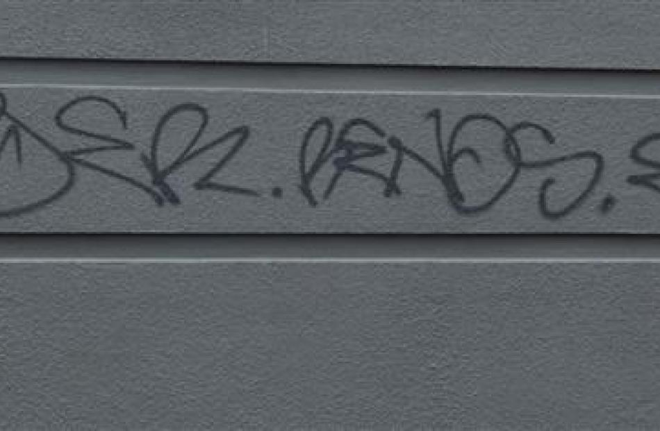 Graffiti spotted around central Dunedin this week.