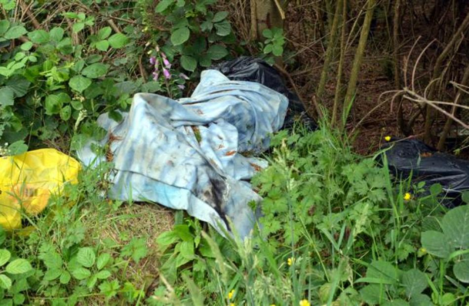 Black bags of rubbish, garden waste and other detritus lie discarded on Flagstaff-Whare Flat Rd,...