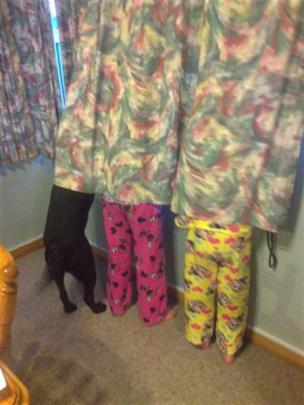 Weekly Winner 3: Hide and seek - Jasmine (6) and Courtney Greer (8) are joined by Roxy the dog as...