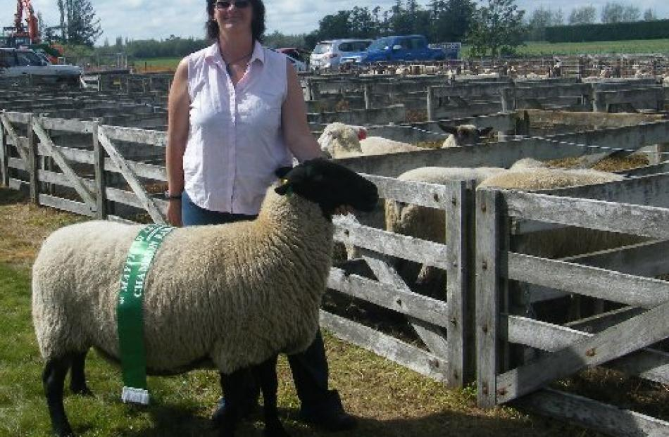 Penni Loffhagen, of Hawarden, had a successful day at the Mayfield Show with her Suffolk ewe...