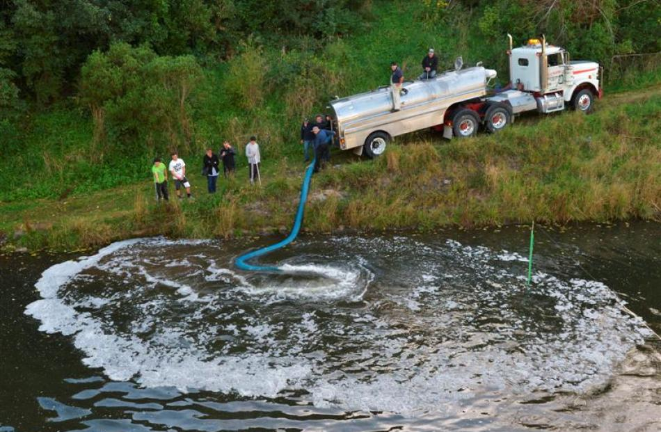 The new Dunedin Community Salmon Trust tanker is used to release 5500 salmon smolt into the Water...