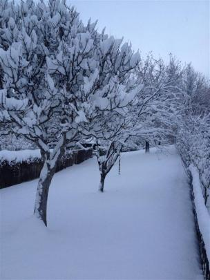 Arrowtown this morning. Photo by Jo Weir