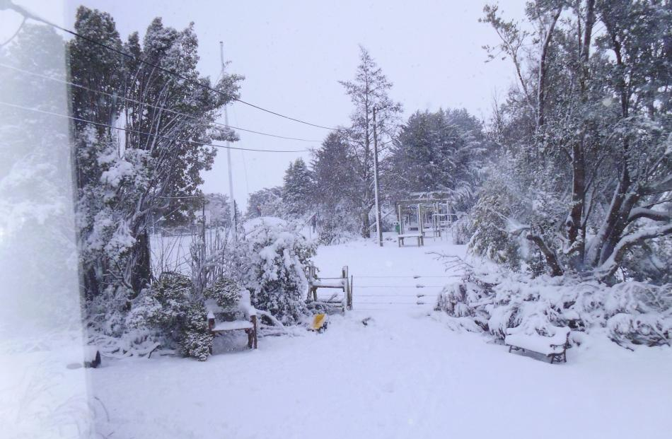 Photos of the snow we got over night at our place in Lee Stream! Photo by Corrin McInnes