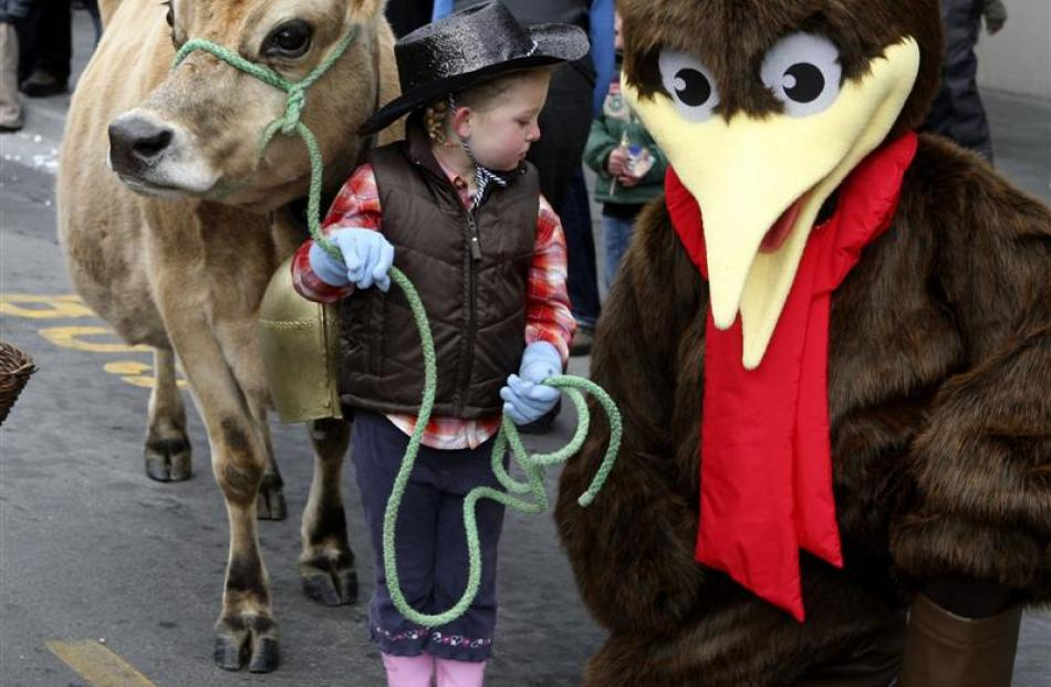 2009: Millie Lewis (3) meets a kiwi as she leads her pet cow Google in the  festival parade in...