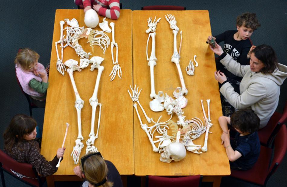 Science Festival | Otago Daily Times Online News