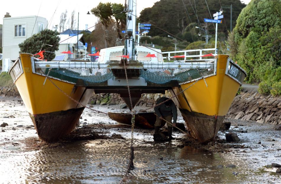 Ian Blair scrapes the bottom of his yacht Mapatu, which washed ashore at Latham Bay, Portobello,...