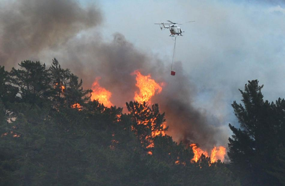A helicopter works to put out a blaze near Outram this morning. Photo by Stephen Jaquiery.