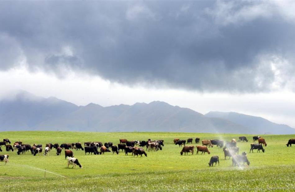 Rain clouds promise to ease the onset of a drought in North Otago. Farmers without irrigation are...