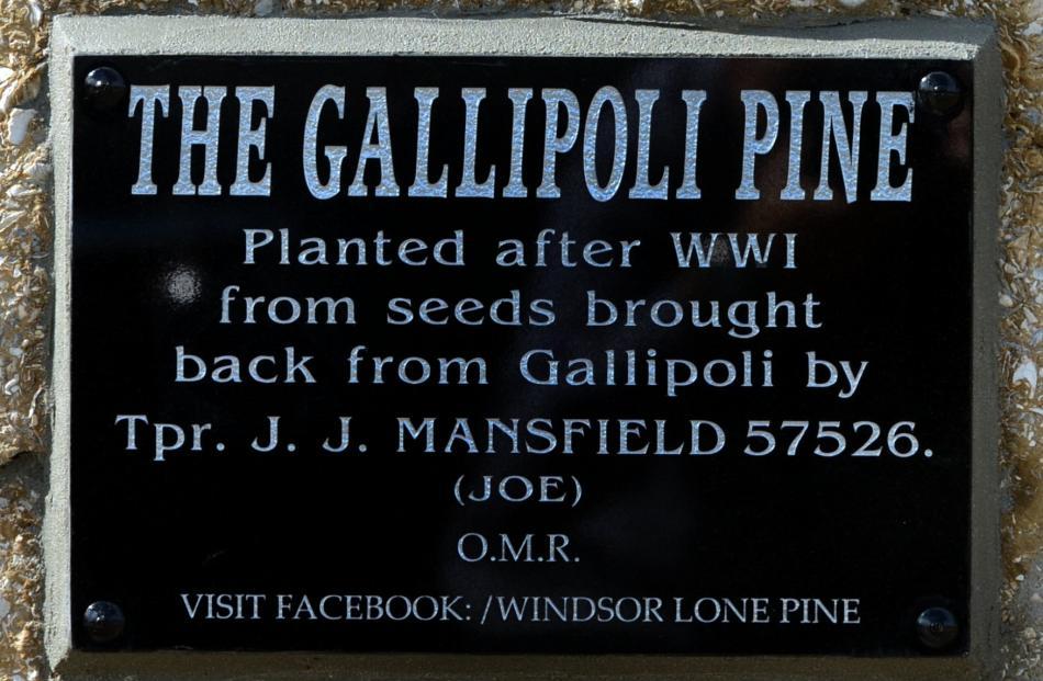 The memorial plaque.