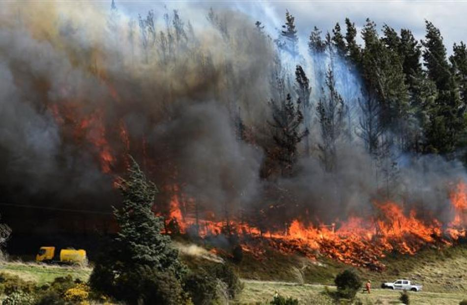 Flames leap into the air from trees on the lower flanks of Saddle Hill above the Southern...