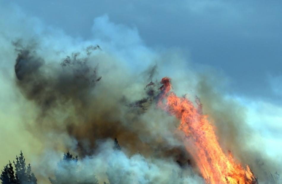 Fire on Saddle Hill in October. Photo: Otago Daily Times