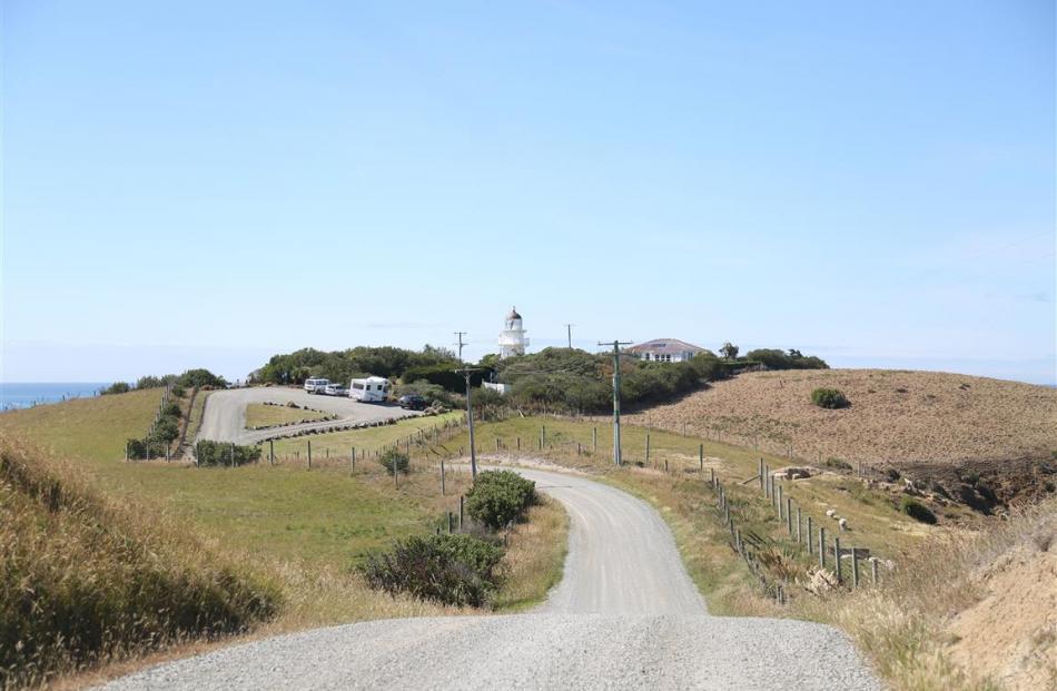 The road to the Katiki Point lighthouse at Moeraki.