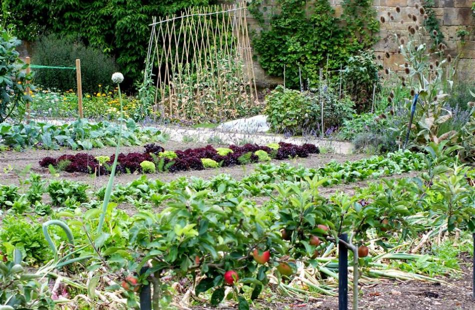 Almost 1ha in area, the walled kitchen garden is very productive.