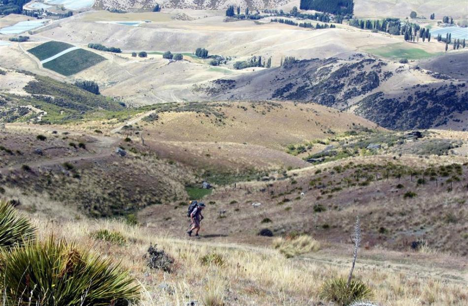 A trekker climbs the Pisa Range on the Cardrona-Cromwell track.