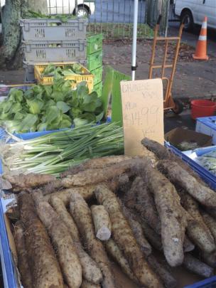 Fresh oyster and shiitake mushrooms and Asian greens at Otara market.