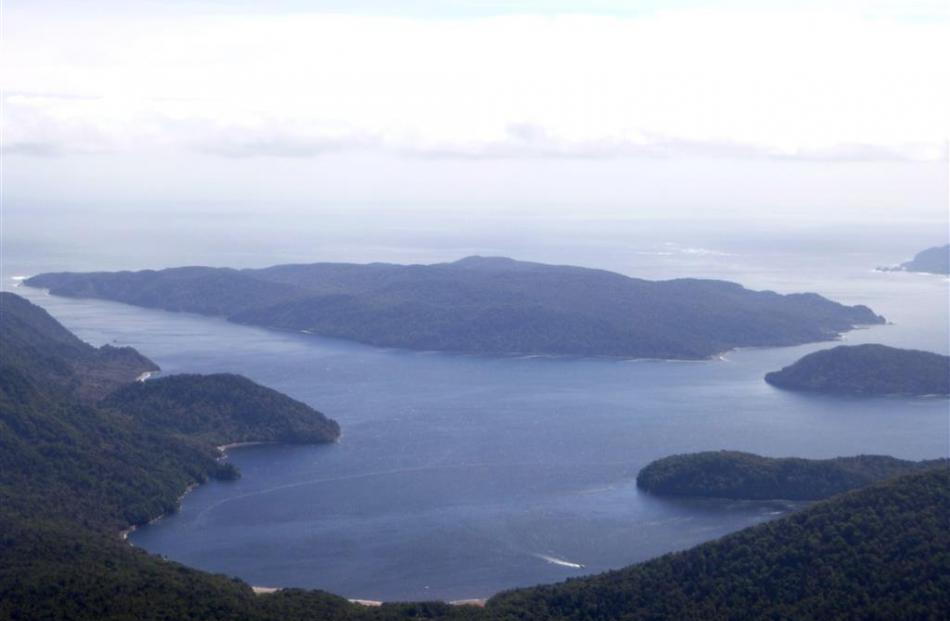 Coal Island, a predator free sanctuary for kiwi at the mouth of Preservation Inlet, from the air.